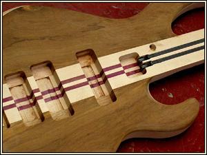 Through Neck Design Of Bass