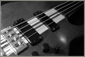 Our complete range of basses