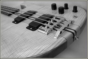 Unique custom designed basses